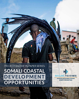 Somali Coastal Development