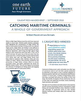 cover page catching maritime criminals report