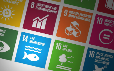 Un Sustainable Fisheries Goals