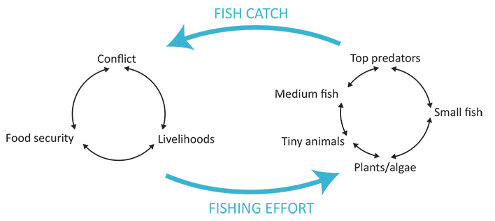 Fisheries and Violence