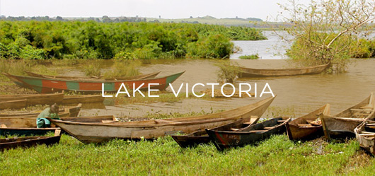 Lake VictoriaFisheries Protection