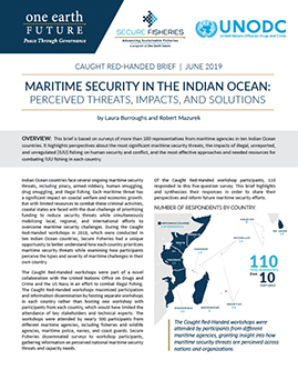 maritime security indian ocean