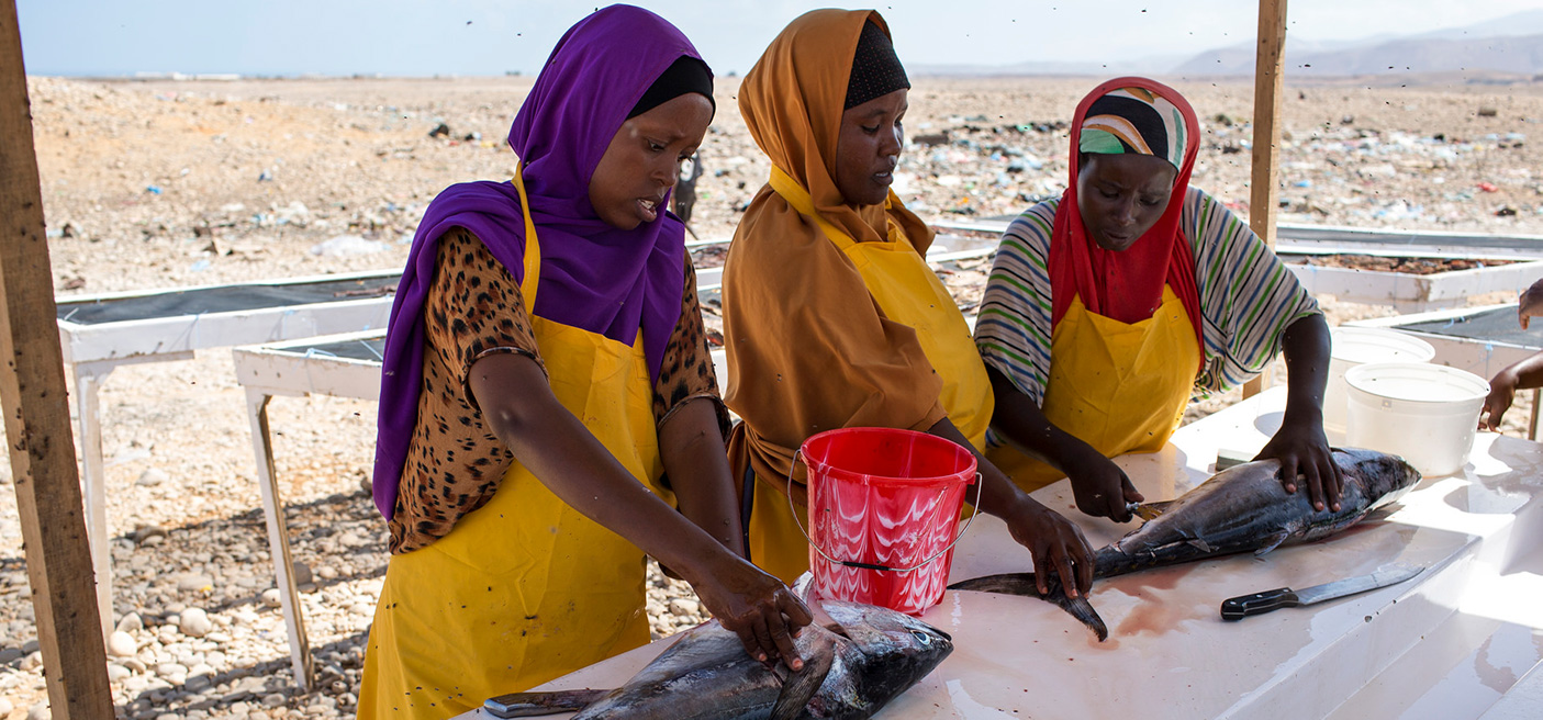 women small fisheries somalia conference
