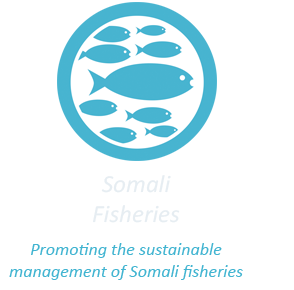 Sustainable Fishing in Somali Oceans