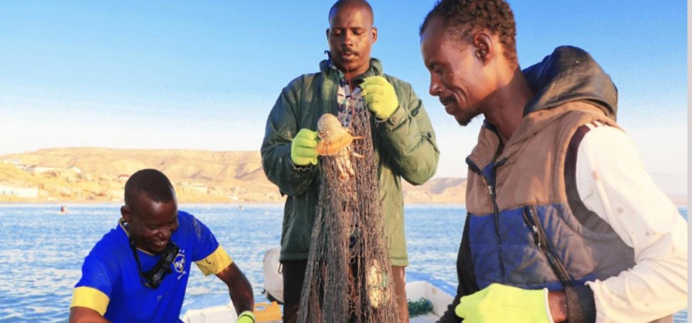 Partnership Somali fishers coastal communities Secure Fisheries Future of Fish