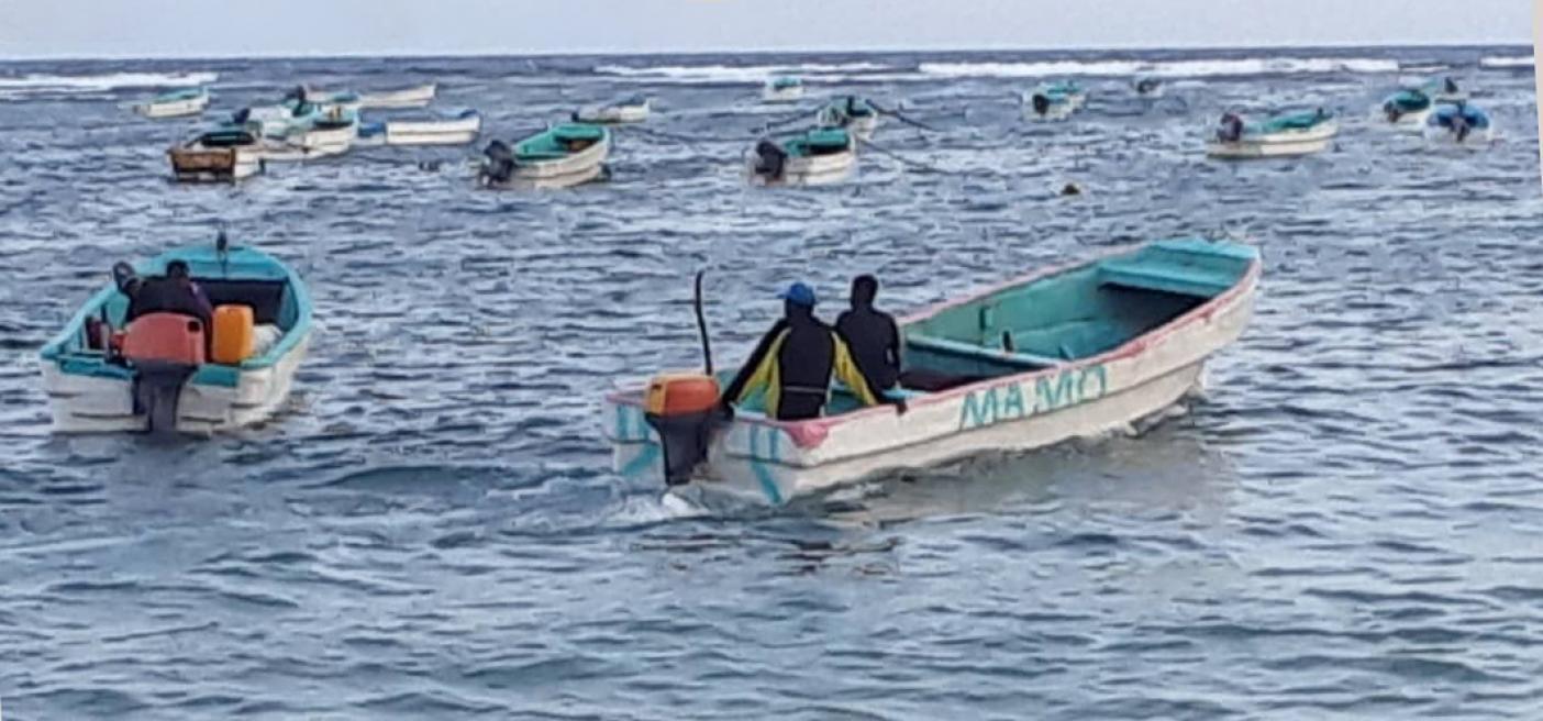 Somali fishers future
