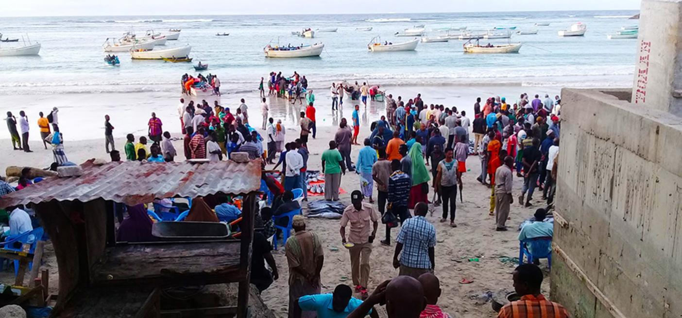 Fish catch data collection Somalia Lido Beach