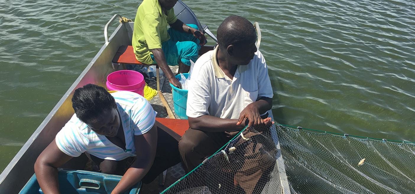 fish study lake victoria