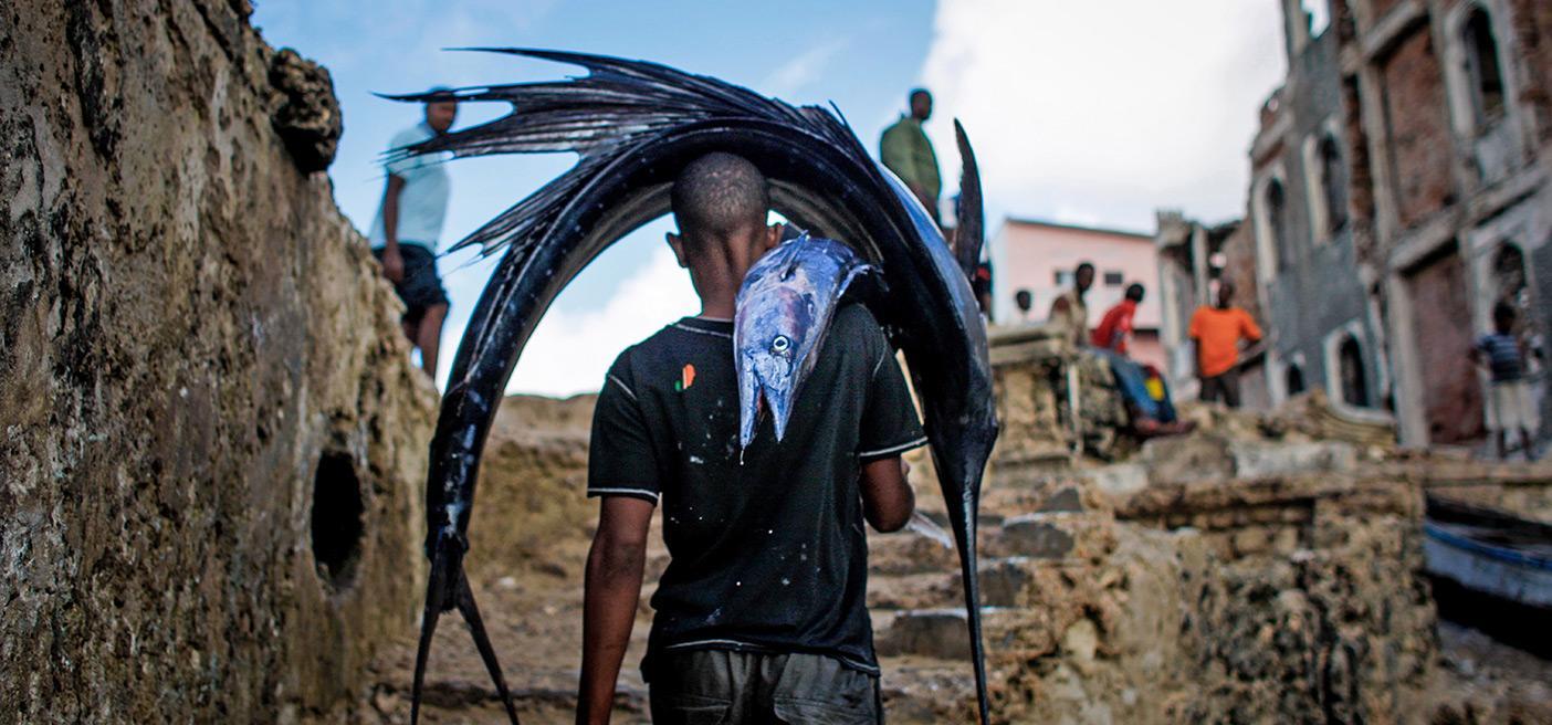 somali coastal development opportunities fisheries