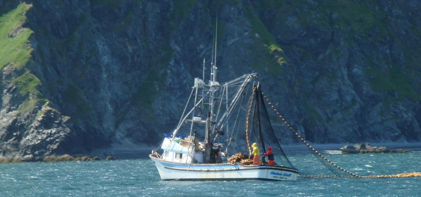 Coast of Alaska