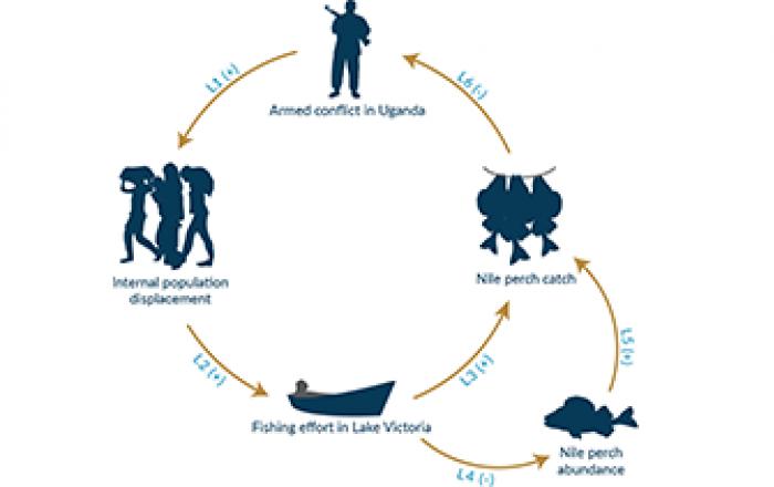 lake victoria fish conflict