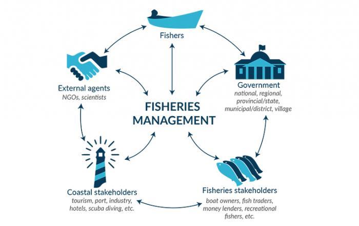 fisheries management Somali region