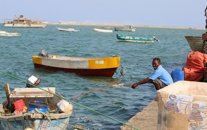 International Fisheries Day