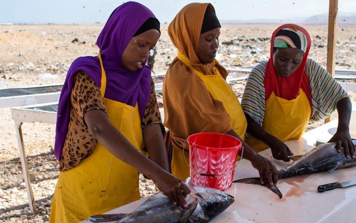roadmap to smallscale fisheries Somalia Fisheries Forum 2019