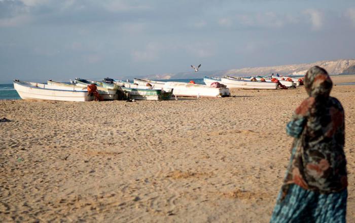 Somali comanagement potential