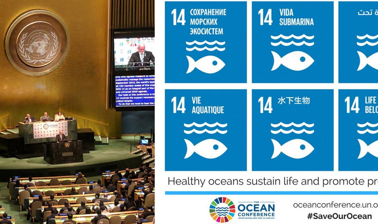 Oceans Conference 2017 UN